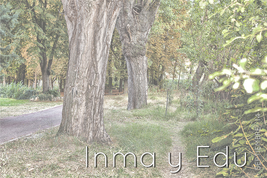 inmayedu-001